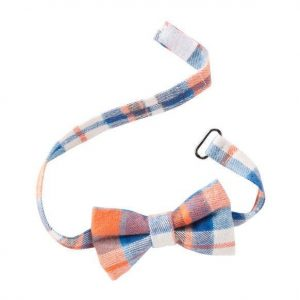 Striped bow tie